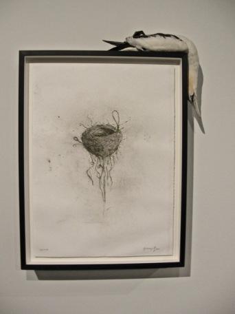Gallery Night Providence, David Winton Bell Gallery